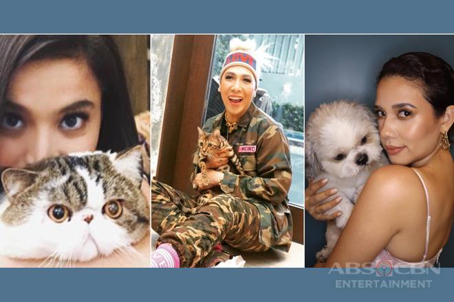 Kilalanin ang mga spoiled at cute na alaga ng It's Showtime family!